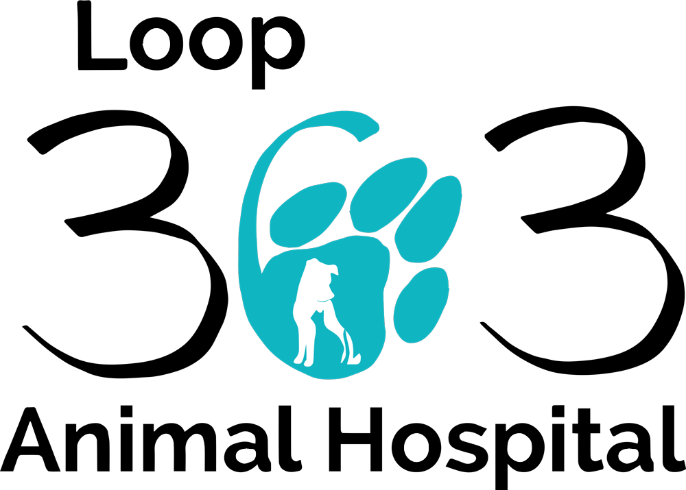 Loop 363 Animal Hospital logo